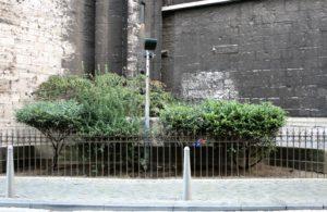 03-liege-cathedrale-saint-paul-za-tymi-krzewami-ukryty-jest-pisuar-fot-jerzy-s-majewski