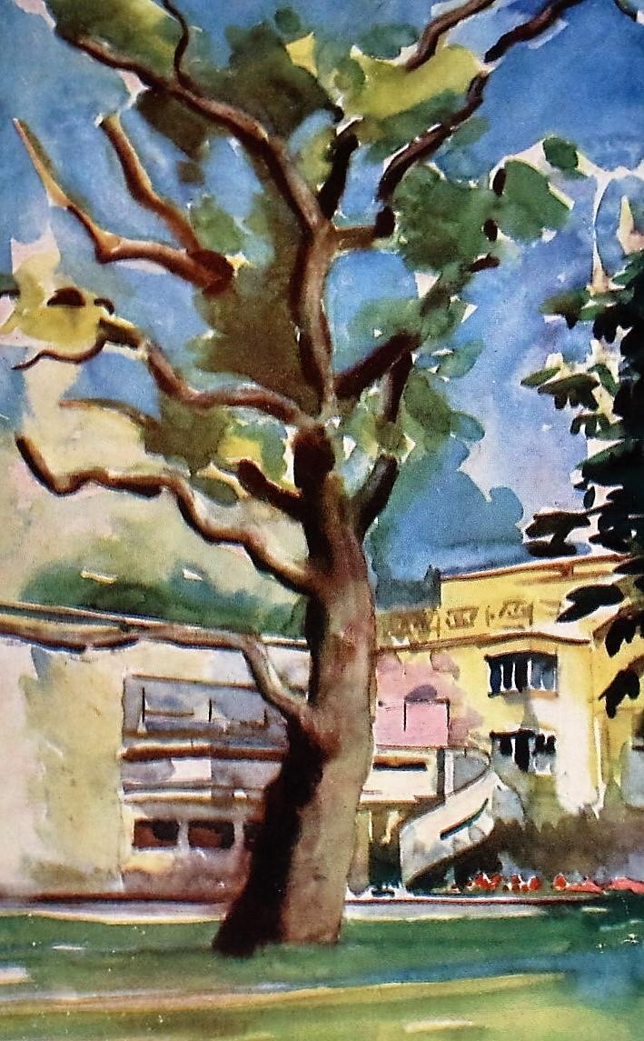 M. Leszczyński, dąb w ogrodzie willi Łepkowskich przy Francuskiej 2. Ilustracja wg Arkady 1937, nr 8