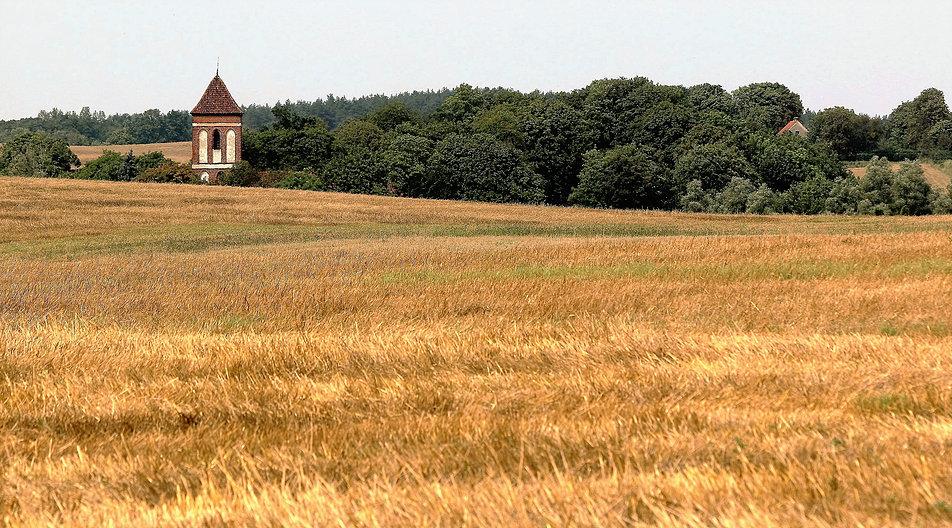 Rolniczy krajobraz kulturowy ziemi chełmińskiej w okolicach Wąbrzeźna. W tle wieża gotyckiego kościółka w Łopatkach. Fot. Jerzy S. Majewski