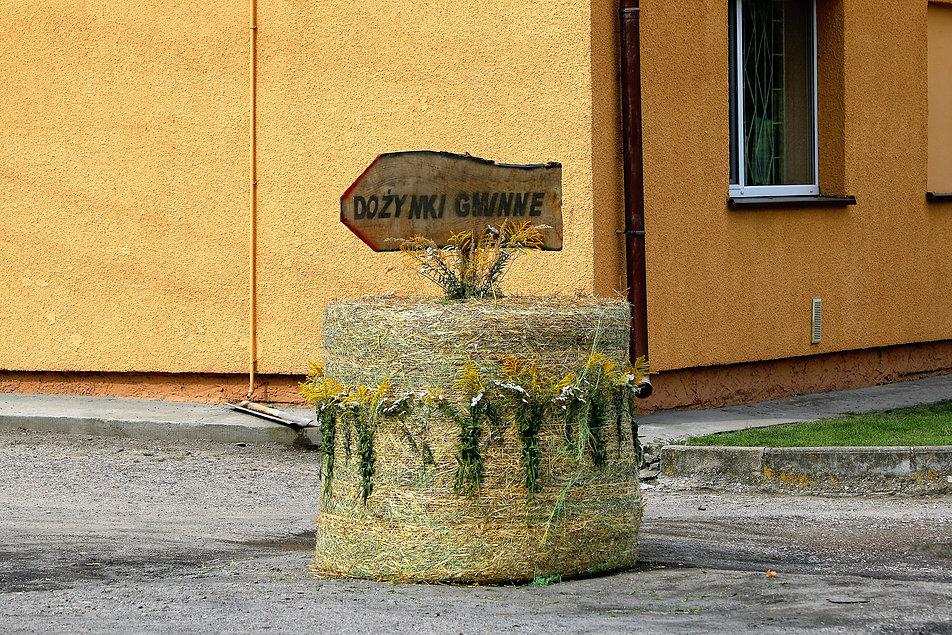 Kruszyny. Drogowskaz dożynkowy. Fot. Jerzy S. Majewski