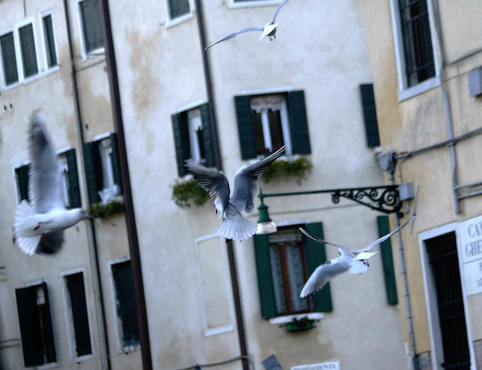 Wenecja. Campo de Ghetto Novo. Fot. Jerzy S. Majewski