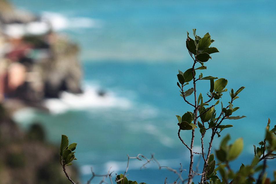 Widoki ze scieżki z Vernazzy do Monterosso al Mare. Fot. Jerzy S. Majewski
